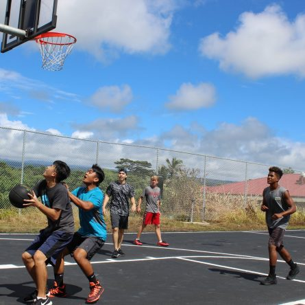 wilson outdoor basketball