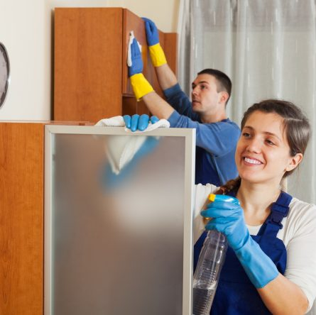 Professional cleaners team working