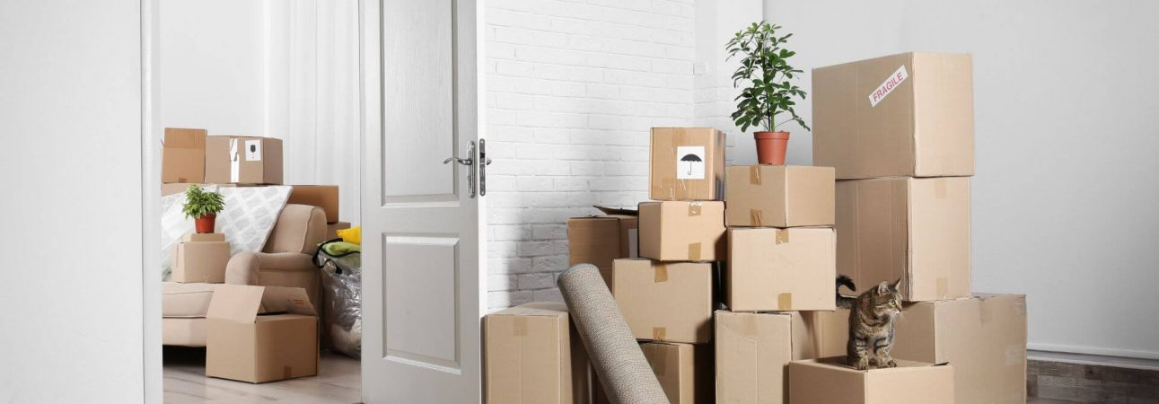 moving companies saskatoon to vancouver